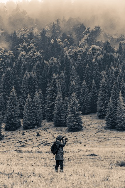 landscape-973262_640.jpg