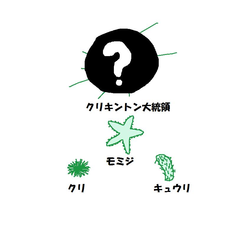 kuri_hierarchie.png