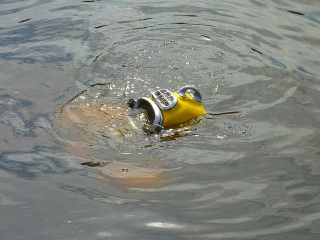 divers-205267_640.jpg