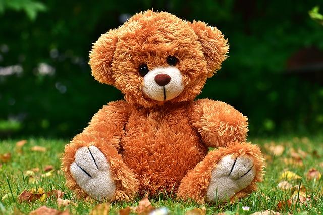 teddy-2468050_640.jpg